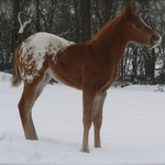 1 month old- Febbraio 2012-