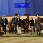 "2010: European Championship ""Produce of Dam"""